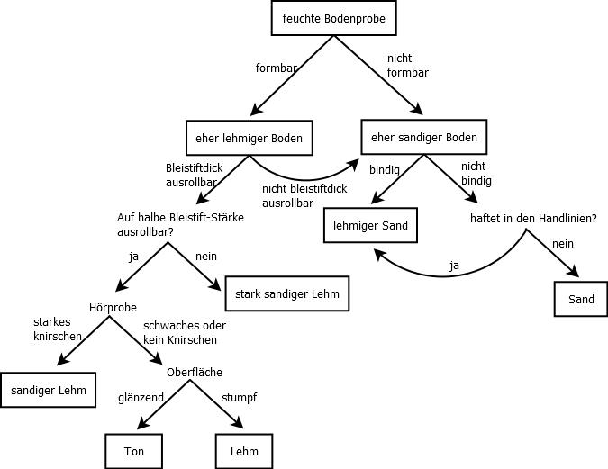 Entscheidungsdiagramm Fingerprobe
