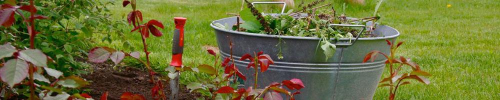 Gartenpflege